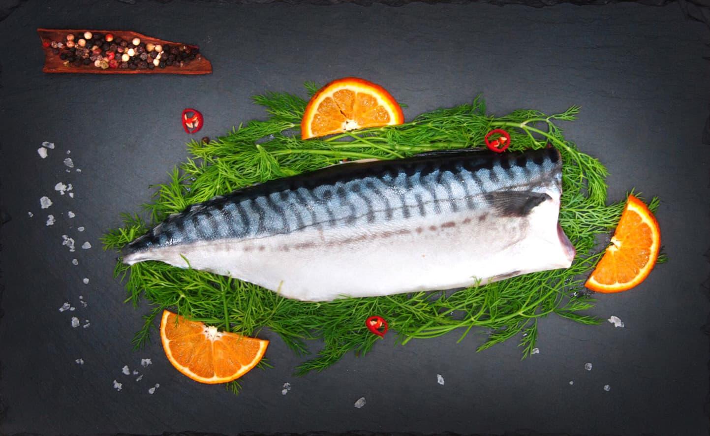 挪威鯖魚俯視1